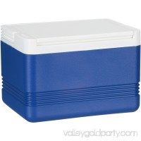 Igloo® Legend™ 5 qt. Cooler   551457251