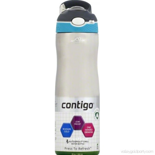Contigo Autospout Ashland Chill Very Berry 20oz Insulated Stainless Steel Bottle