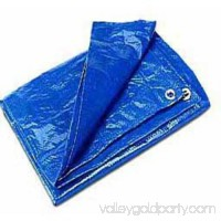 Cwc Regular-Duty Tarp, Blue   554603125