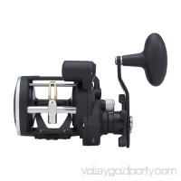 "Penn Rival Level Wind Conventional Reel 30, 3.9:1 Gear Ratio, 2 Bearings, 27"" Retrieve Rate, Right Hand, Boxed   564908448"