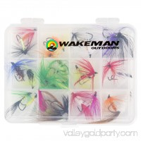 Outdoors Assorted Dry Fly Fishing Flies - 50pc by Wakeman   564755490
